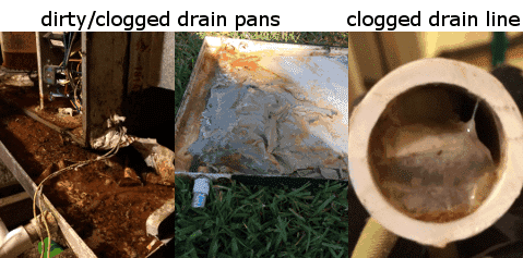 HVAC Maintenance - check system for clogged drain pan and drain lines twice a year